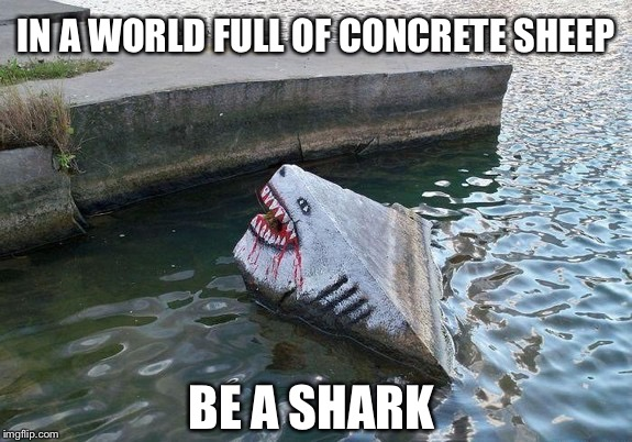 Don't be one of the sheep when you can be a Shark! | IN A WORLD FULL OF CONCRETE SHEEP BE A SHARK | image tagged in shark,shark week,motivation,graffiti,concrete,new memes | made w/ Imgflip meme maker
