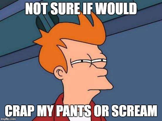 NOT SURE IF WOULD CRAP MY PANTS OR SCREAM | image tagged in memes,futurama fry | made w/ Imgflip meme maker