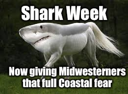 Now roaming the Great Plains | Shark Week Now giving Midwesterners that full Coastal fear | image tagged in memes,shark week,midwest,horse shark,coast,fear | made w/ Imgflip meme maker