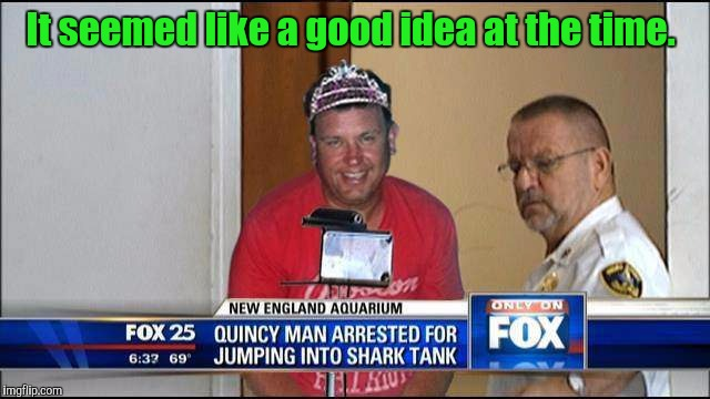 What could possibly go wrong?  Recognizing Shark Week. A Raydog Discovery Channel event.  | It seemed like a good idea at the time. | image tagged in shark week,raydog,funny people,fox news alert,swimming | made w/ Imgflip meme maker