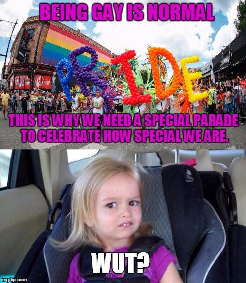 Actually Being Self-Centered is Normal | BEING GAY IS NORMAL THIS IS WHY WE NEED A SPECIAL PARADE TO CELEBRATE HOW SPECIAL WE ARE. WUT? | image tagged in funny,lgbt,parade,normal,self-centered | made w/ Imgflip meme maker
