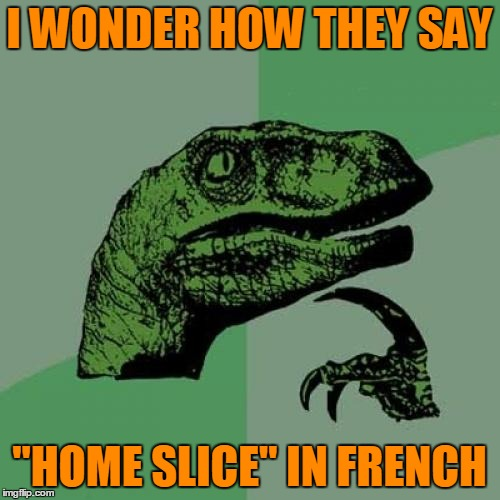 "Philosoraptor Meme | I WONDER HOW THEY SAY ""HOME SLICE"" IN FRENCH 