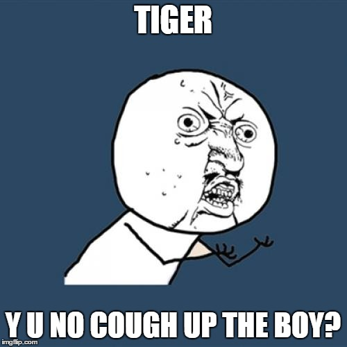 Y U No Meme | TIGER Y U NO COUGH UP THE BOY? | image tagged in memes,y u no | made w/ Imgflip meme maker