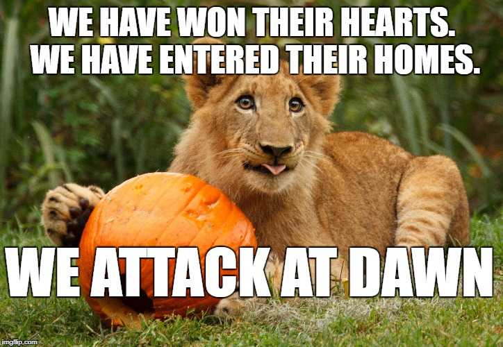 WE HAVE WON THEIR HEARTS. WE HAVE ENTERED THEIR HOMES. WE ATTACK AT DAWN | made w/ Imgflip meme maker