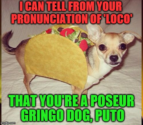 I CAN TELL FROM YOUR PRONUNCIATION OF 'LOCO' THAT YOU'RE A POSEUR GRINGO DOG, PUTO | made w/ Imgflip meme maker