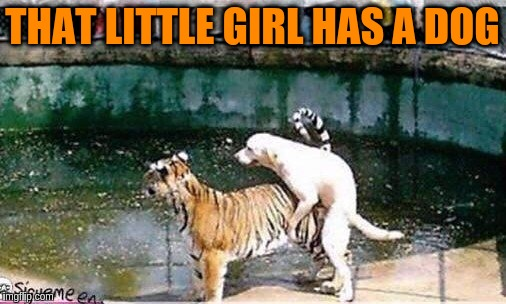 THAT LITTLE GIRL HAS A DOG | made w/ Imgflip meme maker