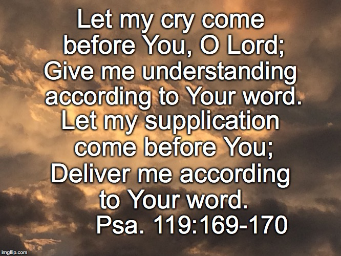 Let my cry come before You, O Lord; Give me understanding according to Your word. Let my supplication come before You; Deliver me according  | image tagged in cry | made w/ Imgflip meme maker