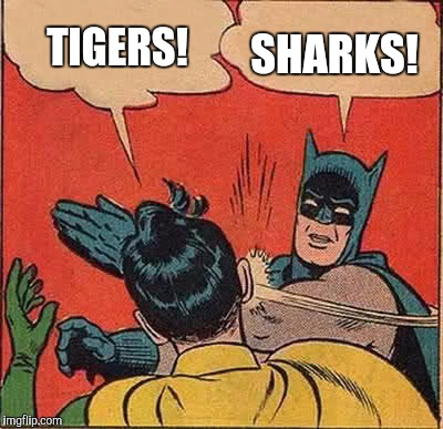 Tigers or sharks?  Cast your vote in the comments!  | TIGERS! SHARKS! | image tagged in memes,batman slapping robin,jbmemegeek,tiger week,shark week | made w/ Imgflip meme maker