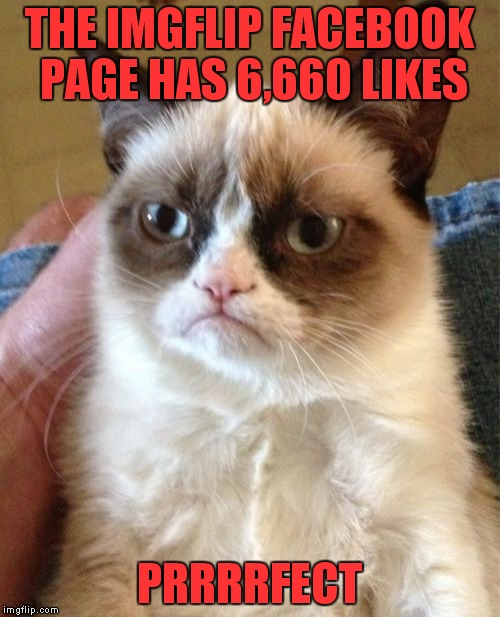 True story yo! | THE IMGFLIP FACEBOOK PAGE HAS 6,660 LIKES PRRRRFECT | image tagged in memes,grumpy cat | made w/ Imgflip meme maker