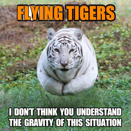 FLYING TIGERS | made w/ Imgflip meme maker