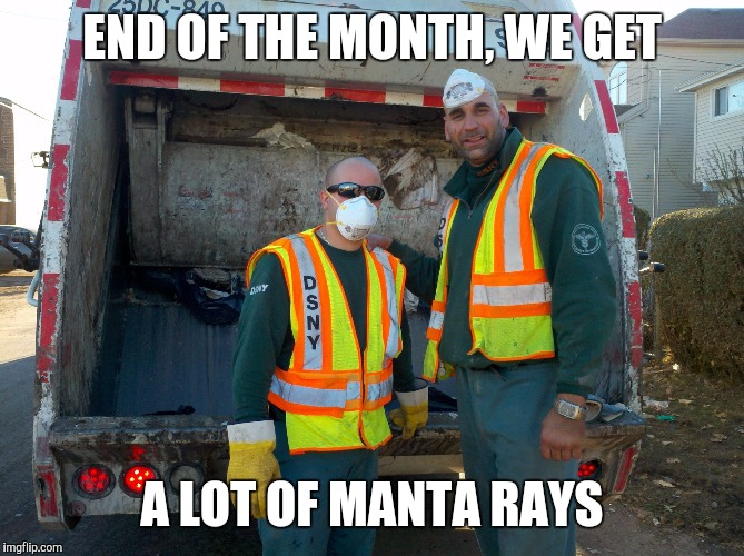 Memes, garbage | END OF THE MONTH, WE GET A LOT OF MANTA RAYS | image tagged in memes,garbage | made w/ Imgflip meme maker