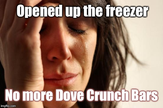 First World Problems Meme | Opened up the freezer No more Dove Crunch Bars | image tagged in memes,first world problems | made w/ Imgflip meme maker