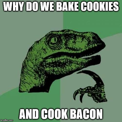 Philosoraptor Meme | WHY DO WE BAKE COOKIES AND COOK BACON | image tagged in memes,philosoraptor | made w/ Imgflip meme maker