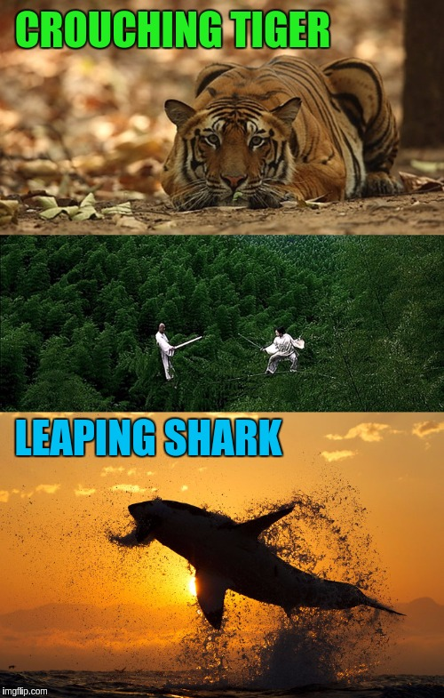 Crouching Tiger Leaping Shark for Tiger Week (TigerLegend1046 Event) and Sharks Week (Raydog and Discovery Channel Event) | CROUCHING TIGER LEAPING SHARK | image tagged in memes,shark week,tiger week,animals,sharks,tigers | made w/ Imgflip meme maker