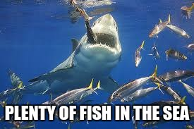 PLENTY OF FISH IN THE SEA | made w/ Imgflip meme maker