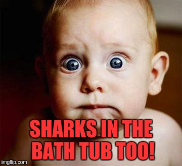 SHARKS IN THE BATH TUB TOO! | made w/ Imgflip meme maker