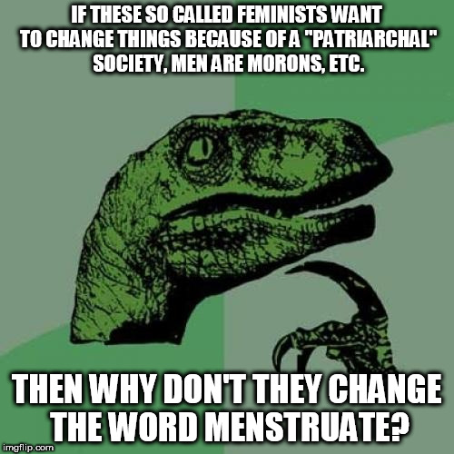 "Philosoraptor Meme | IF THESE SO CALLED FEMINISTS WANT TO CHANGE THINGS BECAUSE OF A ""PATRIARCHAL"" SOCIETY, MEN ARE MORONS, ETC. THEN WHY DON'T THEY CHANGE THE W 
