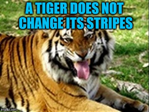 A TIGER DOES NOT CHANGE ITS STRIPES | made w/ Imgflip meme maker