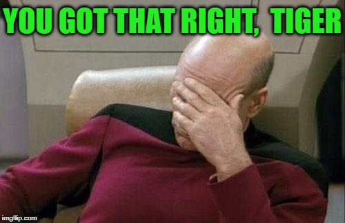 Captain Picard Facepalm Meme | YOU GOT THAT RIGHT,  TIGER | image tagged in memes,captain picard facepalm | made w/ Imgflip meme maker