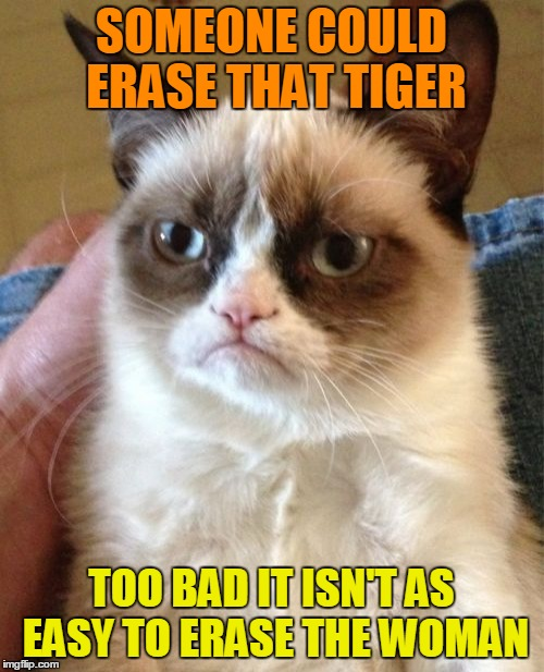 Grumpy Cat Meme | SOMEONE COULD ERASE THAT TIGER TOO BAD IT ISN'T AS EASY TO ERASE THE WOMAN | image tagged in memes,grumpy cat | made w/ Imgflip meme maker