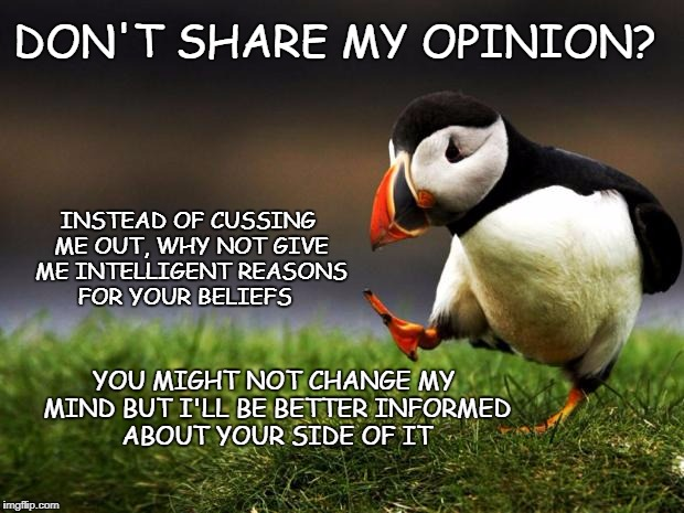Dissenting Opinion | DON'T SHARE MY OPINION? INSTEAD OF CUSSING ME OUT, WHY NOT GIVE ME INTELLIGENT REASONS FOR YOUR BELIEFS YOU MIGHT NOT CHANGE MY MIND BUT I'L | image tagged in unpopular opinion puffin,debate,opinions | made w/ Imgflip meme maker