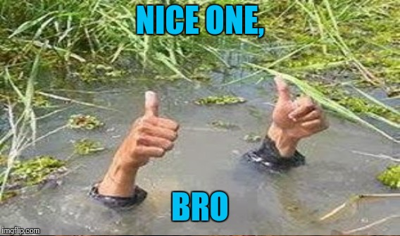 NICE ONE, BRO | made w/ Imgflip meme maker