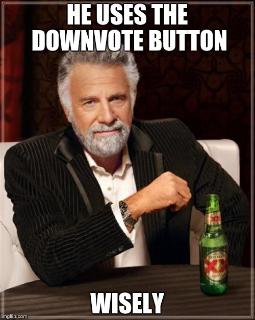The Most Interesting Man In The World Meme | HE USES THE DOWNVOTE BUTTON WISELY | image tagged in memes,the most interesting man in the world | made w/ Imgflip meme maker