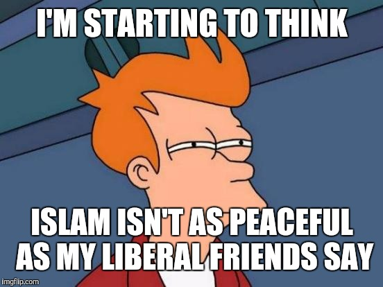 Futurama Fry Meme | I'M STARTING TO THINK ISLAM ISN'T AS PEACEFUL AS MY LIBERAL FRIENDS SAY | image tagged in memes,futurama fry | made w/ Imgflip meme maker