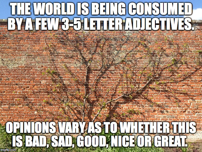 Words consume worlds | THE WORLD IS BEING CONSUMED BY A FEW 3-5 LETTER ADJECTIVES. OPINIONS VARY AS TO WHETHER THIS IS BAD, SAD, GOOD, NICE OR GREAT. | image tagged in cliches,adjectives,opinions,linguistic apocalypse | made w/ Imgflip meme maker