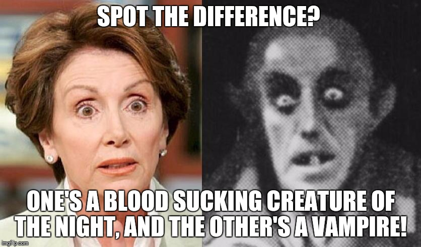 SPOT THE DIFFERENCE? ONE'S A BLOOD SUCKING CREATURE OF THE NIGHT, AND THE OTHER'S A VAMPIRE! | image tagged in nancy pelosi | made w/ Imgflip meme maker