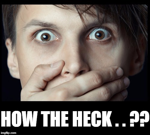 oh my | HOW THE HECK . . ?? | image tagged in oh my | made w/ Imgflip meme maker