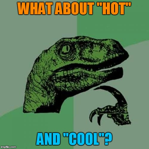 "Philosoraptor Meme | WHAT ABOUT ""HOT"" AND ""COOL""? 