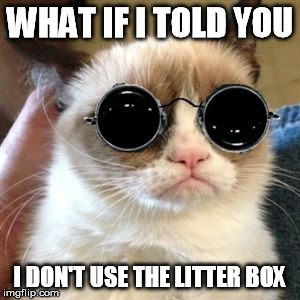 WHAT IF I TOLD YOU I DON'T USE THE LITTER BOX | made w/ Imgflip meme maker