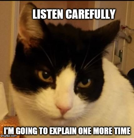 Listen carefully | LISTEN CAREFULLY I'M GOING TO EXPLAIN ONE MORE TIME | image tagged in eddie's face,funny cat memes,trying to explain | made w/ Imgflip meme maker