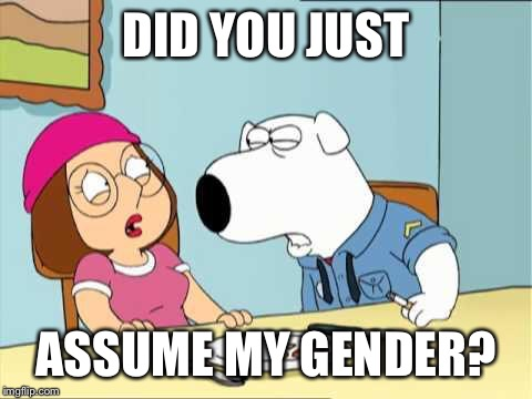 Family Guy | DID YOU JUST ASSUME MY GENDER? | image tagged in family guy | made w/ Imgflip meme maker