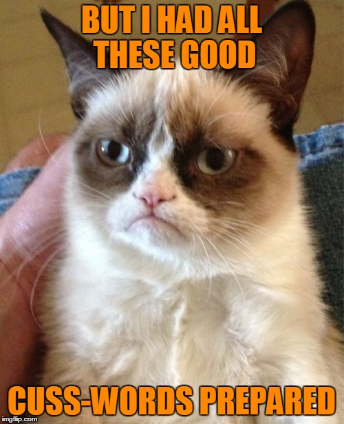 Grumpy Cat Meme | BUT I HAD ALL THESE GOOD CUSS-WORDS PREPARED | image tagged in memes,grumpy cat | made w/ Imgflip meme maker