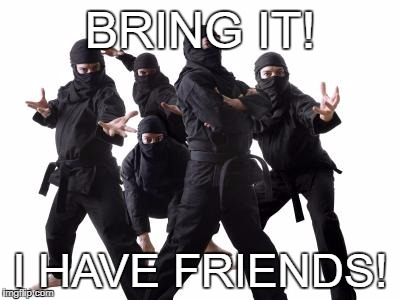 BRING IT! I HAVE FRIENDS! | image tagged in ninjas | made w/ Imgflip meme maker
