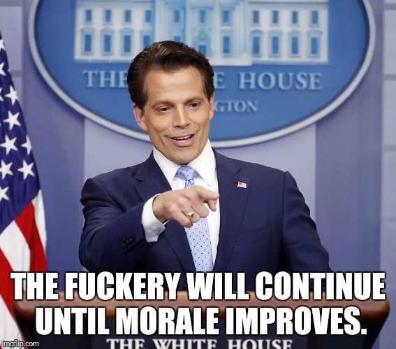 THE F**KERY WILL CONTINUE UNTIL MORALE IMPROVES. | image tagged in scaramucci | made w/ Imgflip meme maker