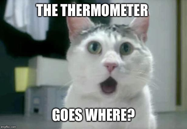 OMG Cat | THE THERMOMETER GOES WHERE? | image tagged in memes,omg cat | made w/ Imgflip meme maker