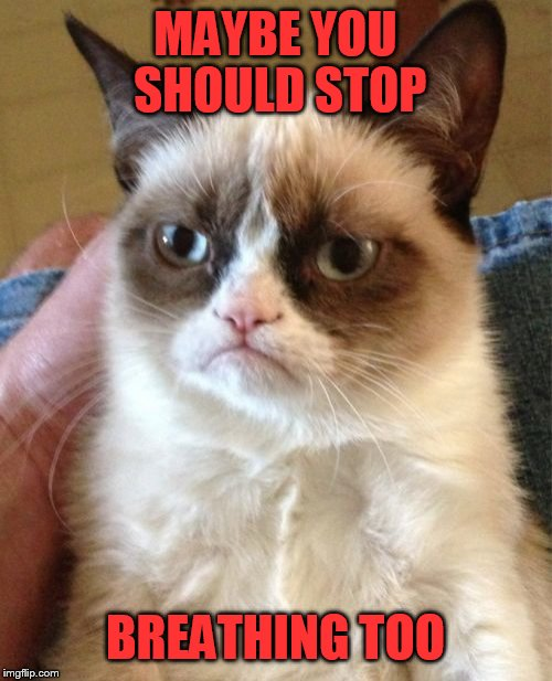 Grumpy Cat Meme | MAYBE YOU SHOULD STOP BREATHING TOO | image tagged in memes,grumpy cat | made w/ Imgflip meme maker