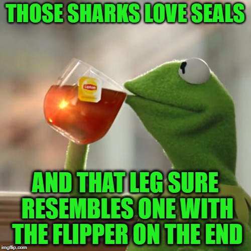 But Thats None Of My Business Meme | THOSE SHARKS LOVE SEALS AND THAT LEG SURE RESEMBLES ONE WITH THE FLIPPER ON THE END | image tagged in memes,but thats none of my business,kermit the frog | made w/ Imgflip meme maker