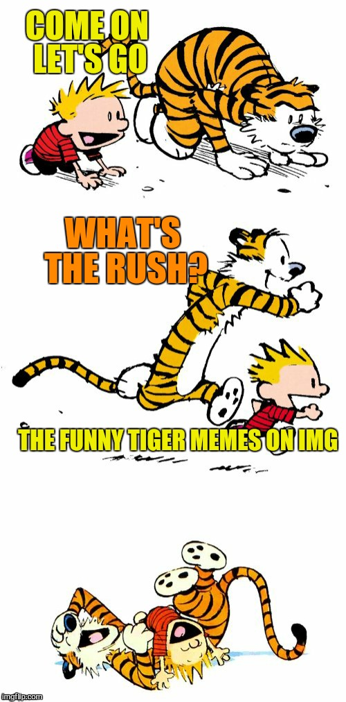 Calvin and Hobbes Puns | COME ON LET'S GO WHAT'S THE RUSH? THE FUNNY TIGER MEMES ON IMG | image tagged in calvin and hobbes puns | made w/ Imgflip meme maker
