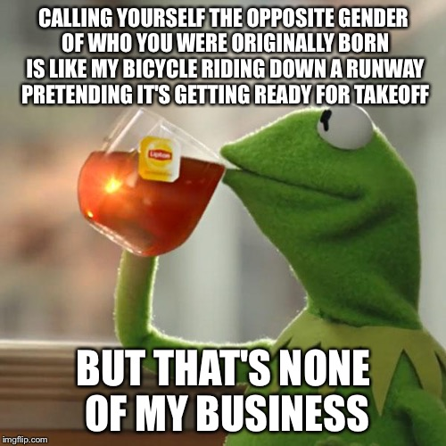 But Thats None Of My Business Meme | CALLING YOURSELF THE OPPOSITE GENDER OF WHO YOU WERE ORIGINALLY BORN IS LIKE MY BICYCLE RIDING DOWN A RUNWAY PRETENDING IT'S GETTING READY F | image tagged in memes,but thats none of my business,kermit the frog | made w/ Imgflip meme maker