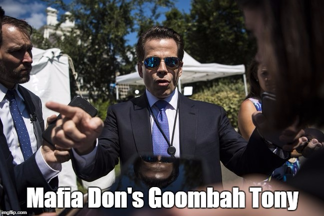 Mafia Don's Goombah Tony | made w/ Imgflip meme maker