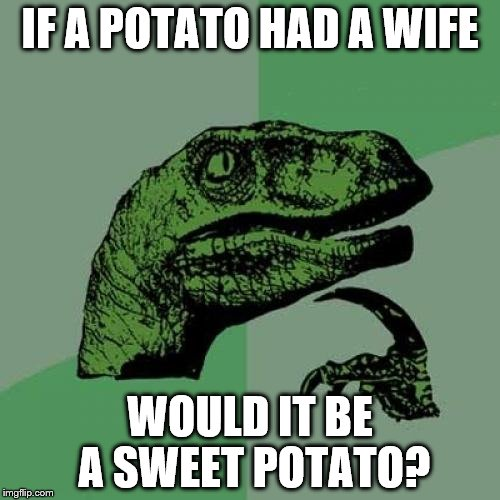 Philosoraptor Meme | IF A POTATO HAD A WIFE WOULD IT BE A SWEET POTATO? | image tagged in memes,philosoraptor | made w/ Imgflip meme maker
