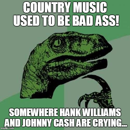 Country Music | COUNTRY MUSIC USED TO BE BAD ASS! SOMEWHERE HANK WILLIAMS AND JOHNNY CASH ARE CRYING... | image tagged in memes,philosoraptor,country music | made w/ Imgflip meme maker
