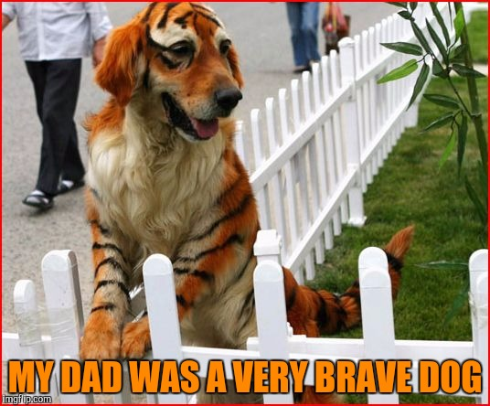 MY DAD WAS A VERY BRAVE DOG | made w/ Imgflip meme maker