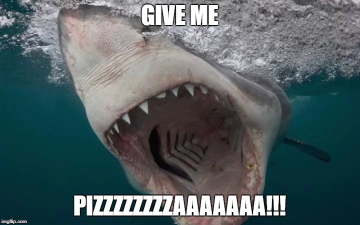 Dem fast food chains be everywhere! | GIVE ME PIZZZZZZZZAAAAAAA!!! | image tagged in shark week | made w/ Imgflip meme maker