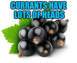 CURRANTS HAVE LOTS OF HEADS | made w/ Imgflip meme maker