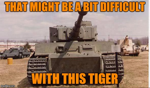 THAT MIGHT BE A BIT DIFFICULT WITH THIS TIGER | made w/ Imgflip meme maker